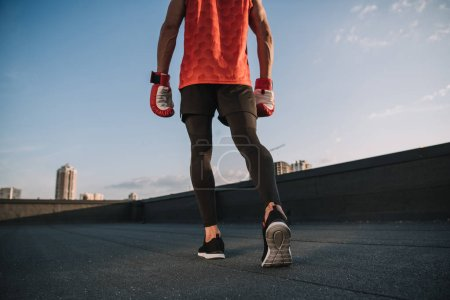 cropped image of sportsman walking with boxing gloves on roof