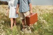 cropped shot of couple with retro suitcase holding hands while standing in field with wild flowers