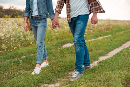 cropped shot of couple holding hands while walking in field with wild flowers