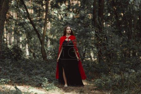 Photo pour Mystique fille en robe noire et un manteau rouge, les balades en forêt - image libre de droit