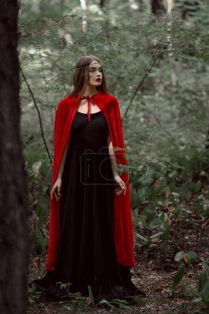 Photo pour Belle fille mystique dans une cape rouge en forêt - image libre de droit
