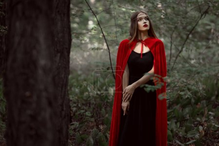 attractive mystic girl in red cloak in forest