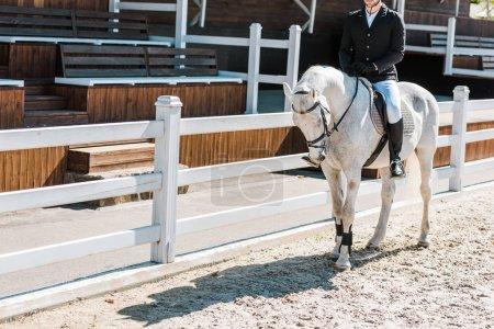 Photo pour Cropped image de cheval de l'équitation équestre mâle au club de cheval - image libre de droit
