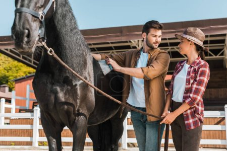 male equestrian cleaning black horse with brush at ranch and looking at colleague