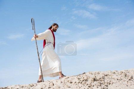 Photo pour Vue de côté de Jésus en robe, écharpe rouge et Couronne d'épines à pied sur la colline de sable avec le personnel en bois dans le désert - image libre de droit