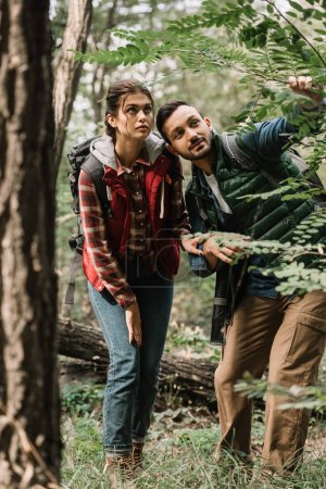 couple of young travelers with backpacks hiking in woods