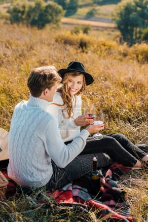 smiling couple clinking with glasses of red wine during picnic on rural meadow