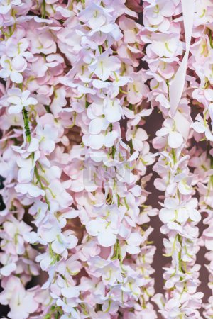 Close-up view of beautiful decorative pink flowers full frame background