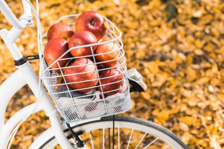 selective focus of bicycle with basket full of delicious red apples outdoors