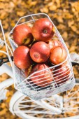 close up of bicycle with basket full of delicious red apples outdoors