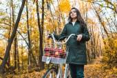 """Постер, картина, фотообои """"низкий угол зрения молодой женщины, перевозящих велосипедов с корзиной, полной яблок в желтый Осенний лес"""""""