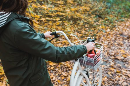 cropped image of woman carrying bicycle with basket full of apples in yellow autumnal forest