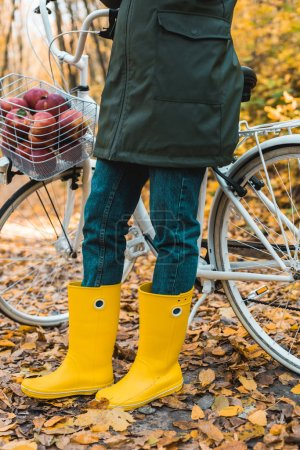 cropped image of woman in yellow rubber boots standing near bicycle with basket full of apples in autumnal forest