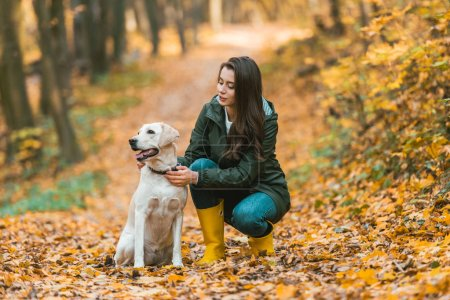 young woman adjusting dog collar on golden retriever while sitting on leafy path in autumnal forest