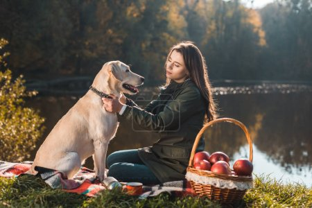 young woman sitting on blanket and adjusting dog collar on golden retriever in park