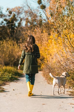 rear view of woman in yellow rubber boots walking with golden retriever in autumnal park