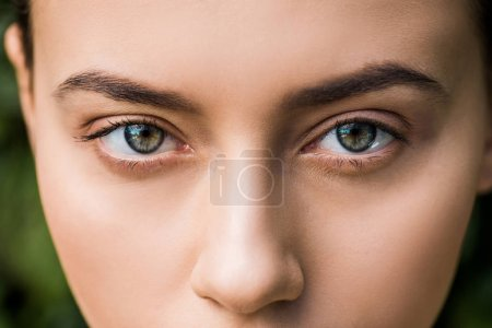 Photo for Close up of bright woman eyes looking at camera - Royalty Free Image