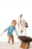 toddler boy pulling out sticks from decorative stork nest isolated on white