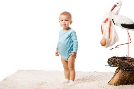 cute toddler boy in blue bodysuit standing on carpet near big decorative stork in nest isolated on white