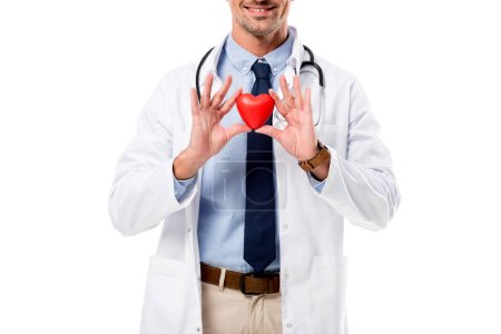 partial view of smiling doctor in white coat with stethoscope holding heart model in hands isolated on white, heart healthcare concept