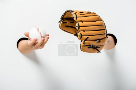 cropped image of woman holding baseball glove and ball through holes on white