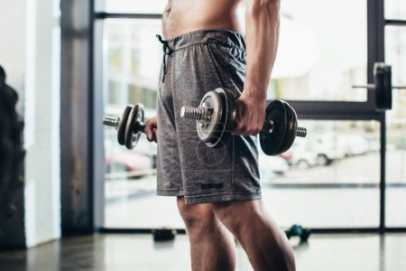 cropped image of shirtless sportsman training with dumbbells in gym