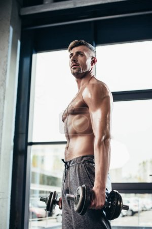 Photo for Handsome shirtless sportsman training with dumbbells in gym and looking away - Royalty Free Image