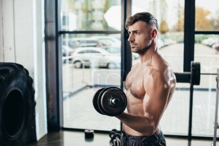 Photo for Handsome shirtless sweaty sportsman training with dumbbells in gym - Royalty Free Image
