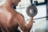 cropped image of shirtless sportsman training with dumbbell in gym