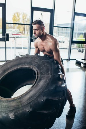 handsome shirtless sweaty sportsman lifting tire in gym