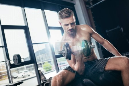Photo for Handsome muscular sportsman sitting on tire and exercising with in gym dumbbell - Royalty Free Image