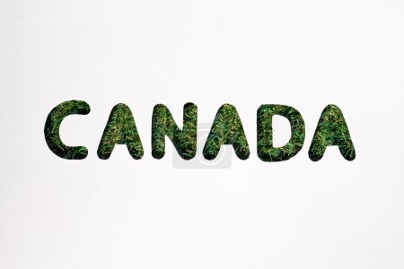 board with cut out word 'canada' on white background