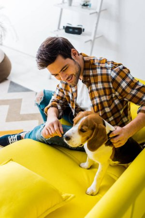 handsome smiling man spending time with beagle dog at home