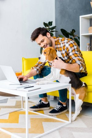 Photo for Happy freelancer working on laptop in living room with beagle dog - Royalty Free Image