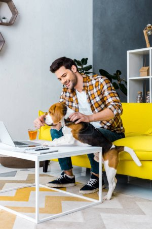 Photo for Handsome smiling freelancer working on laptop in living room with dog - Royalty Free Image