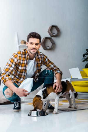 handsome smiling man feeding beagle dog in living room