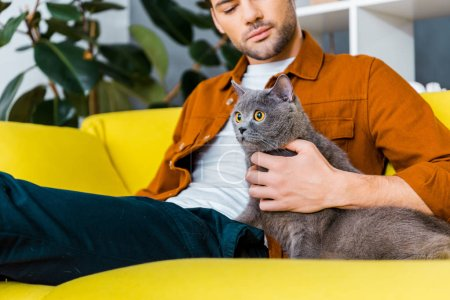 handsome man with grey furry cat sitting on sofa at home