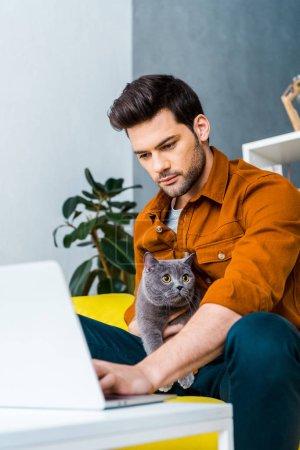 Photo pour Jeune homme à l'aide d'ordinateur portable sur le canapé avec chat british shorthair - image libre de droit