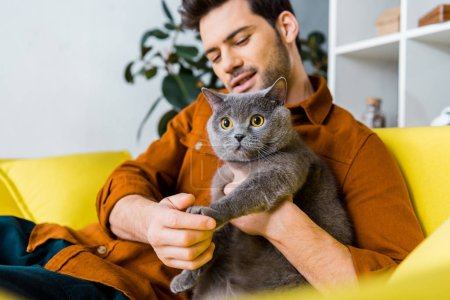 casual smiling man with british shorthair cat sitting on sofa at home