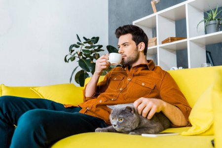 handsome man drinking coffee and sitting on sofa with british shorthair cat