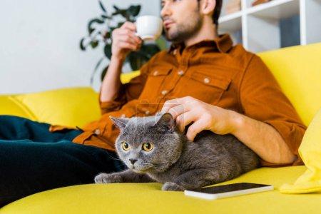 Photo pour Mise au point sélective du smartphone, chat british shorthair et homme avec du café sur le canapé - image libre de droit