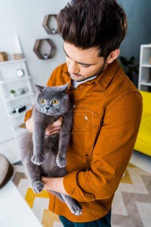 handsome man holding british shorthair cat in living room