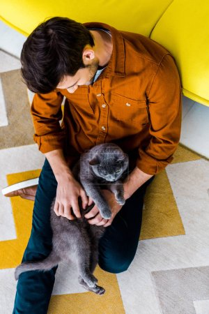 overhead view of man sitting on carpet with british shorthair cat