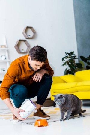 handsome man feeding grey british shorthair cat in living room