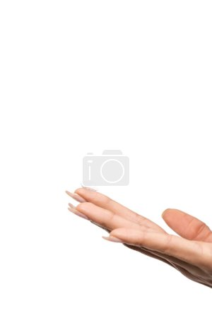 close-up partial view of female hand holding contact lens isolated on white