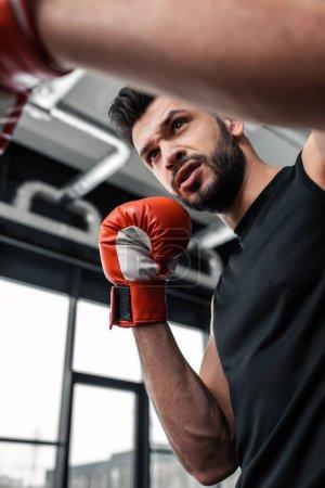 Photo pour Vue faible angle de beau jeune boxeur grave la boxe gym - image libre de droit