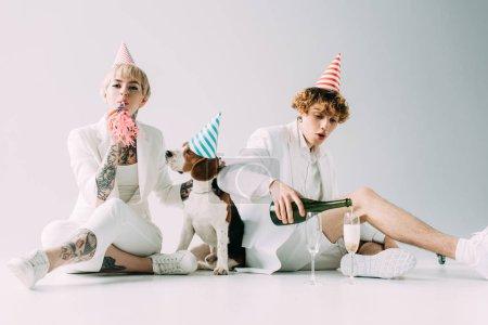 Photo pour Souffleur de tenue de femme tout en champagne poring homme dans des verres en position assise près de chien beagle sur fond gris - image libre de droit