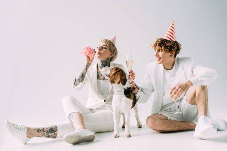 Photo pour Femme, souffler en soufflerie tout homme portant des lunettes avec du champagne tout en restant assis près de chien beagle sur fond gris - image libre de droit