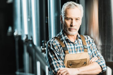 Photo for Senior brewer posing with crossed arms in brewery - Royalty Free Image