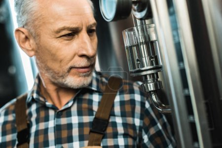 Photo for Senior male brewer looking at brewery equipment - Royalty Free Image